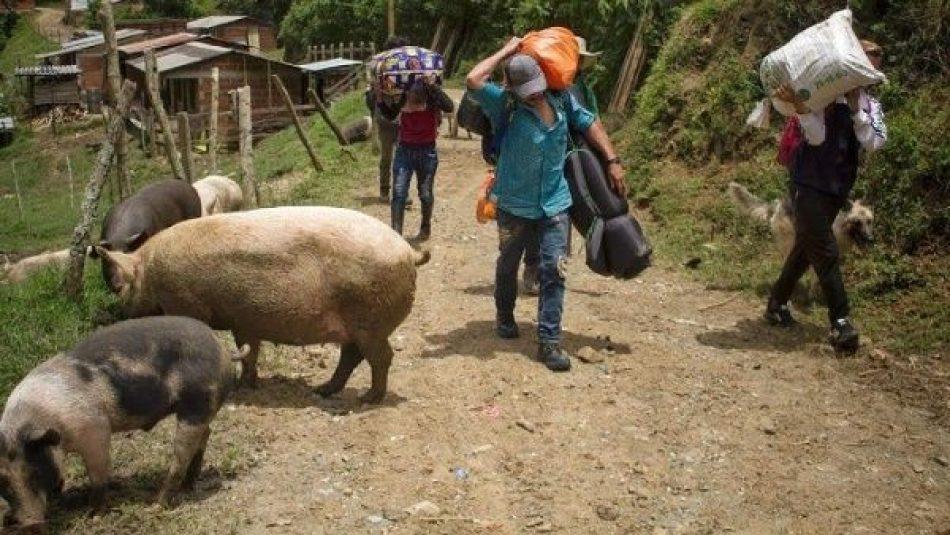 Crece crisis humanitaria en el sur de Colombia