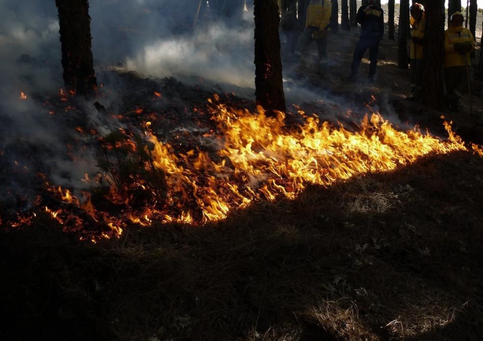 """""""Incluso con los incendios, el objetivo es ayudar al planeta a reencontrar el equilibro que le hemos obligado a perder"""""""