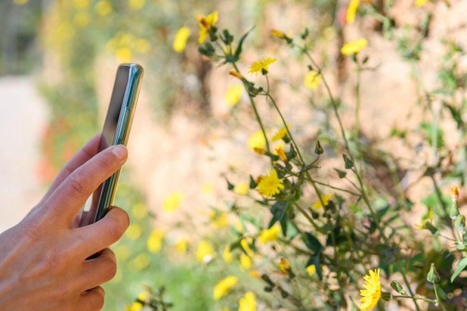 El Observatorio de la Biodiversidad Agraria (OBA) lanza una APP para recabar información sobre la relación entre naturaleza y agricultura