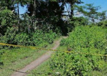 Indepaz reporta nueva masacre en zona rural de Cúcuta, Colombia