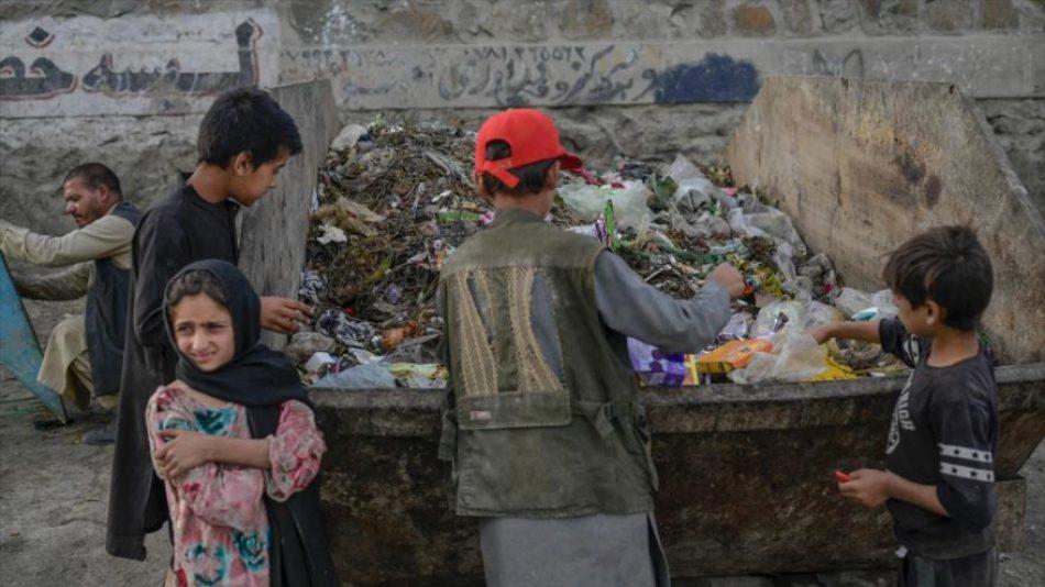 El Programa Mundial de Alimentos alerta: Solo el 5 % de los hogares afganos tiene suficiente para comer