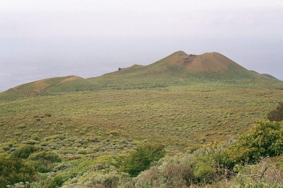 Las bacterias marinas del volcán Tagoro, con potencial para uso farmacéutico