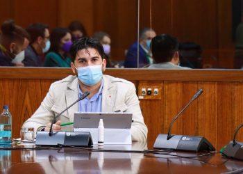 Aguirre tendrá que comparecer a petición de Unidas Podemos por Andalucía para dar explicaciones por la gestión del Virus del Nilo