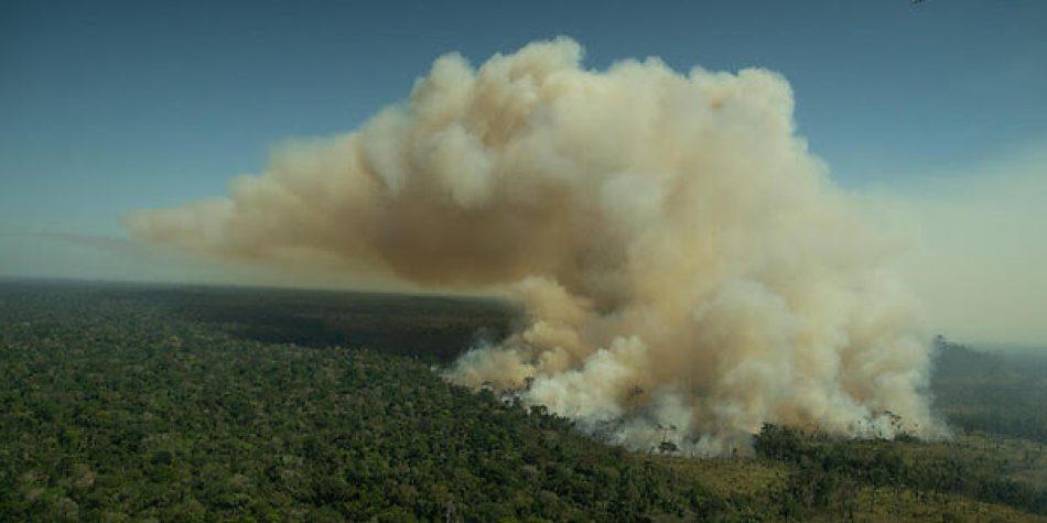 Greenpeace denuncia que el Banco Santander sigue financiando la deforestación de la Amazonia