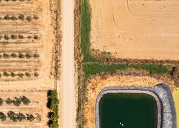 """Alianza Verde reclama al Ministerio para la Transición Ecológica medidas urgentes y valientes para poner fin al """"saqueo de agua"""" de los regadíos ilegales"""