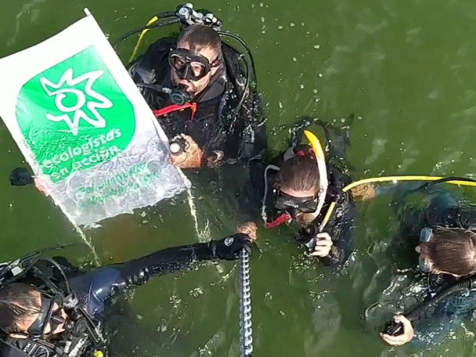 Ecologistas en Acción confirma que el Mar Menor es una «sopa verde»