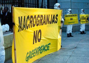 Greenpeace entrega más de 237.000 firmas ciudadanas contra las macrogranjas en el Ministerio para la Transición Ecológica